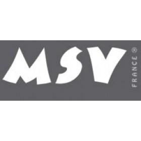 MSV France